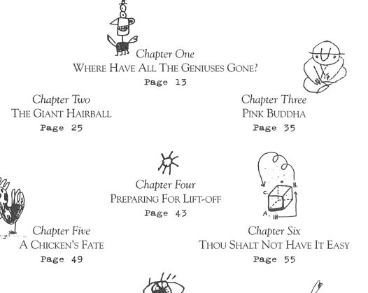 Part of the table of contents of Orbiting the Giant Hairball